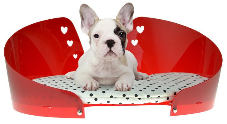 luxury-dog-bed-ddpluspet